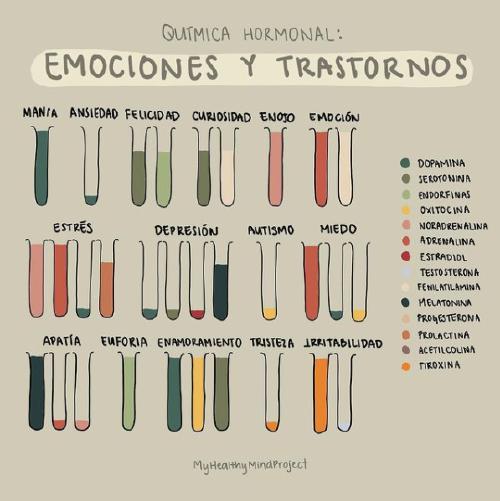 Quimica_hormonal